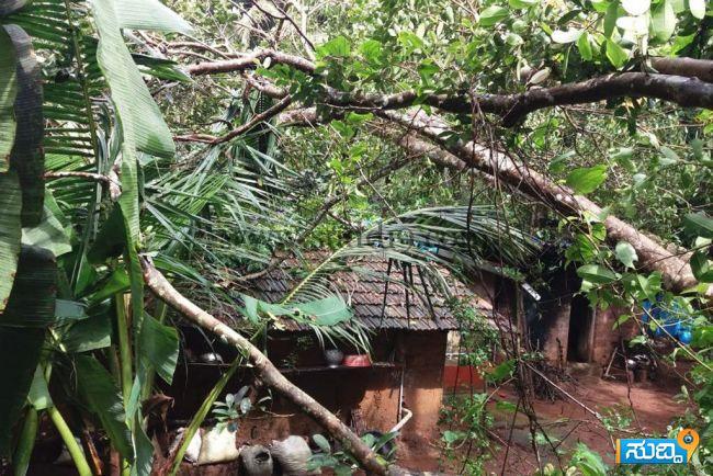 Vitla Rain Damage (1)