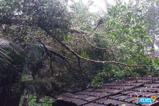 Vitla Rain Damage (2)